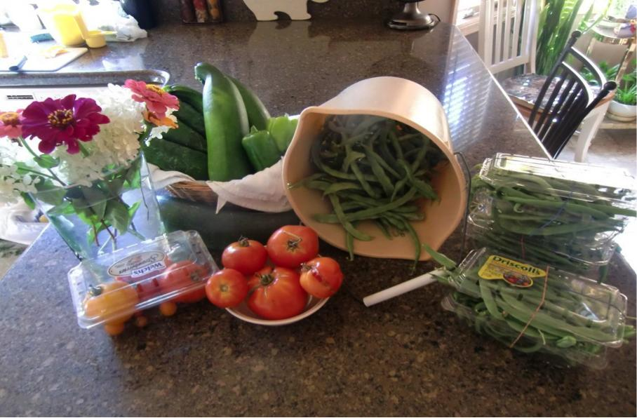 The Green Thumb: Midwestern Gardener