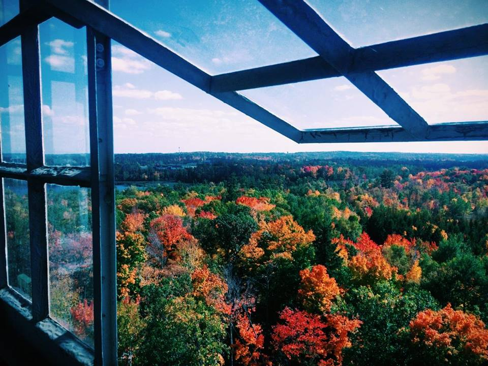 View from the Fire Tower at the Forest History Center in Grand Rapids, Minnesota. Photo by Joe Huber'15.