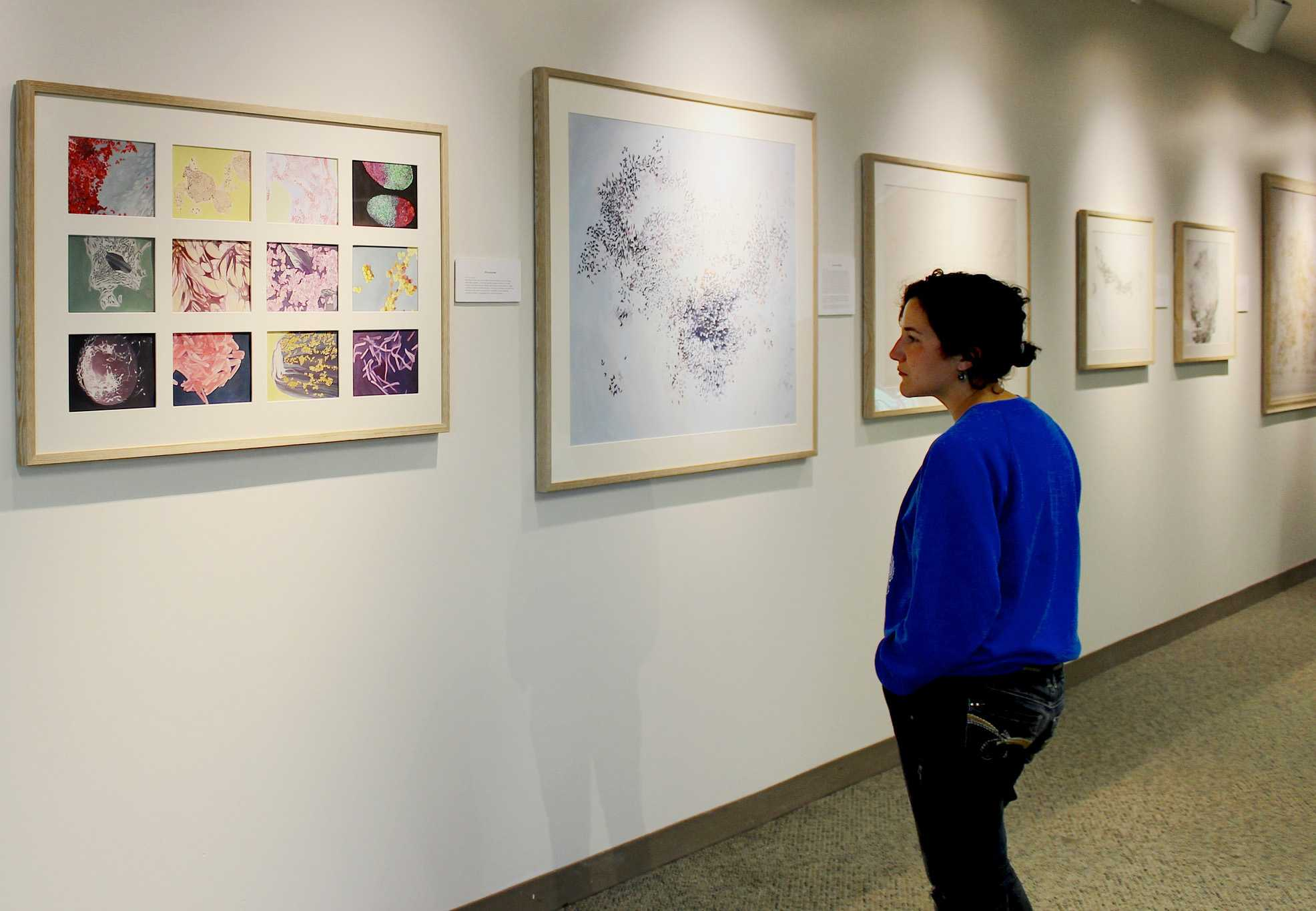 EMERGENCE: Smail Gallery Exhibit by Macalester Graduate Karina Li