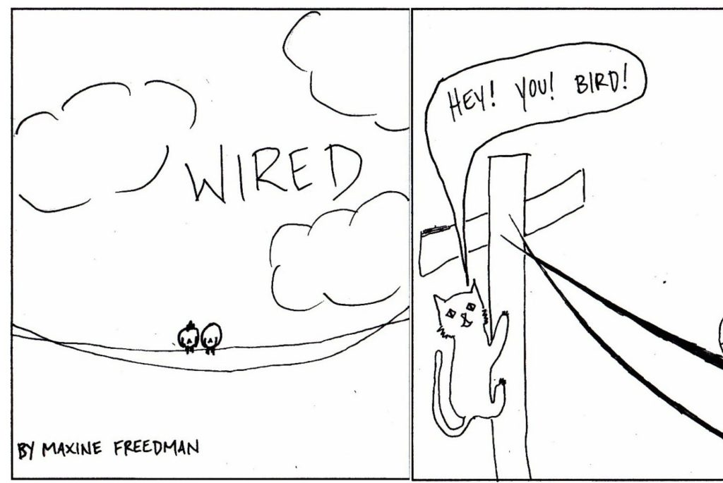 Wired: 2/24