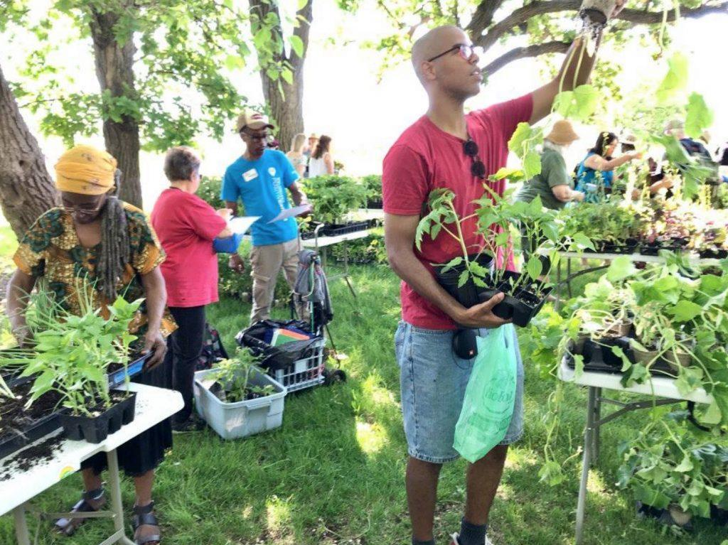 Food, artists, community and parks at Frogtown Farm
