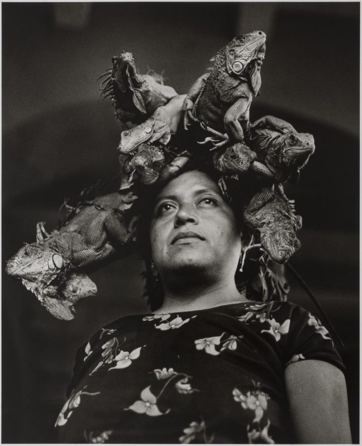 Nuestra+Se%C3%B1ora+de+las+Iguanas+%28Our+Lady+of+the+Iguanas%29+by+Graciela+Iturbide+%28Daniel+Greenberg+and+Susan+Steinhauser.+%C2%A9+Graciela+Iturbide.+Courtesy%2C+Museum+of+Fine+Arts%2C+Boston.%29