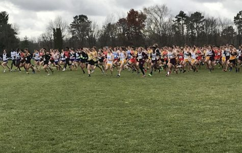 Cross Country teams reflect on meaningful MIAC Championships
