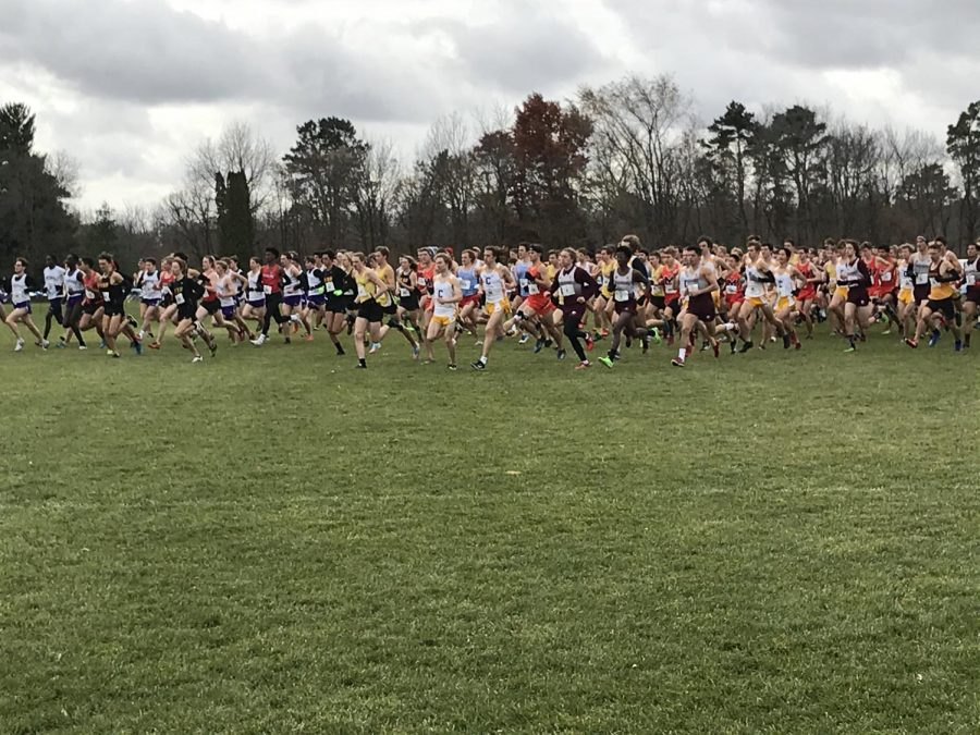 The Macalester Men's Cross Country team, also known as the Mac Pack, takes off in the opening of the MIAC Cross Country Conference Championships. Photo by Matt Glover '22.