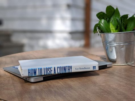 "Book Review: ""How to Lose a Country"""