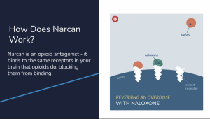 Narcan powerpoint slide courtesy of Zarra TM '21.